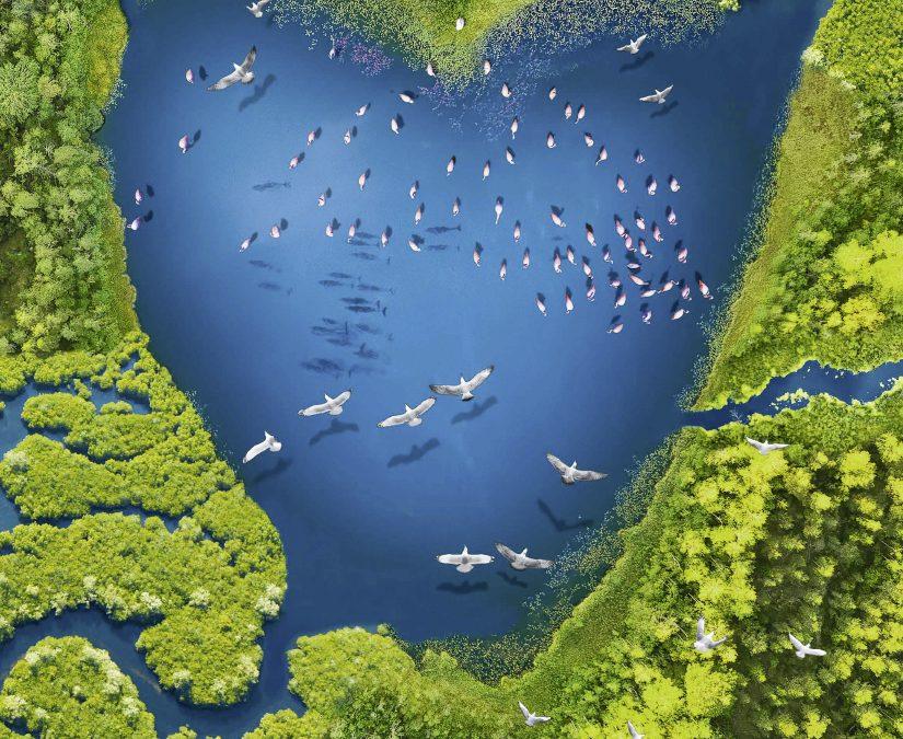 Día Mundial de los Humedales 2021